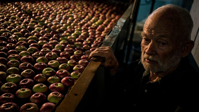 Ray W. Allen looks out over a sea of apples, literally, floating in a water tank at Allenholm Farm Apple Orchard in South Hero and headed for a series of conveyors that will lift them from the water to a processing room where they are packed for shipping to local supermarkets and even flown out to customers across the country.