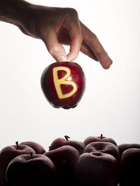 Lee school system earns B rating