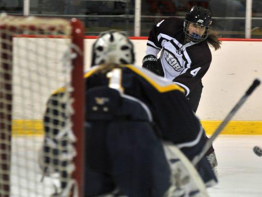 WDH 1129 Storm hockey.JPG
