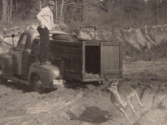 It seems hard to believe, but there was a time when Alabama was not the deer hunting destination it is today.