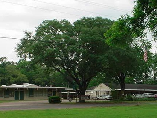 Palmetto Elementary School Pic cropped.jpg