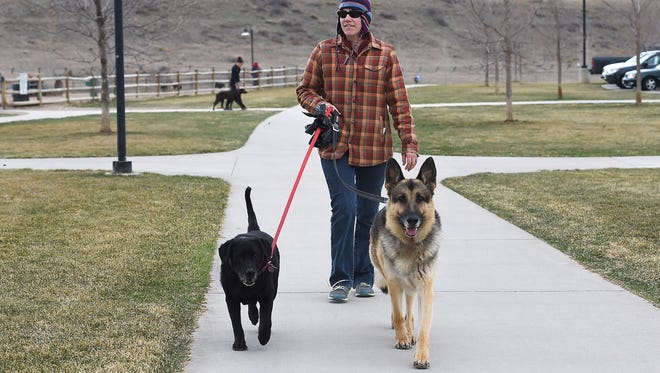 Brittany Anderson walks her client's dogs Alice, left, and Tip at Spring Canyon Park on Wednesday, March 16, 2016. Anderson has a dog walking and pet sitting business called Scoobe Doo and Horses Too.
