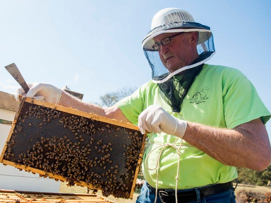 Maryville beekeeper Charlie Parton shows the bees on
