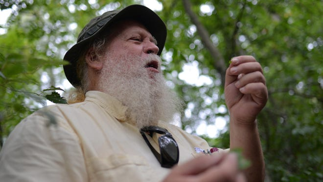 Trustee Charles White of Deptford discusses eating greenbrier during a nature walk about foraging food at Old Pine Farm Natural Lands Trust.