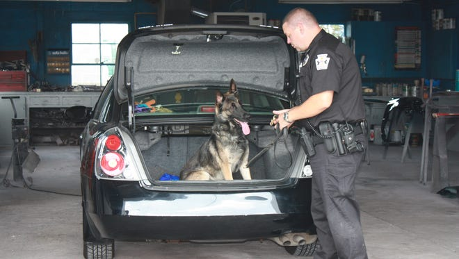 Rony, a K-9 with the Greencastle Police Department, conducts a vehicle search. The dog has been with the department for the past seven and a half years.