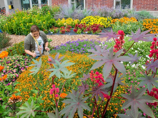 Master Gardeners get as much as they give, says Gail