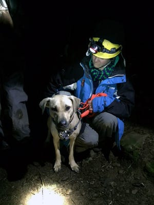 Dr. Amy Amsler, an Oregon Humane Society volunteer, helps during a rescue of Sandy a yellow Labrador plunged 150 feet down a cliff before being rescued.