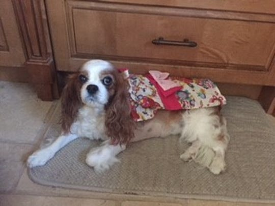 Remy poses with the kimono she got in Japan.