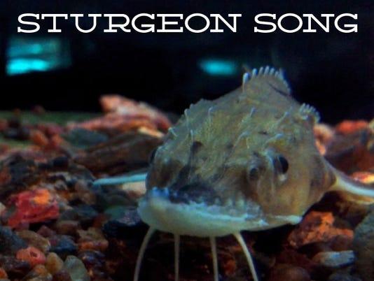 Sturgeon Song
