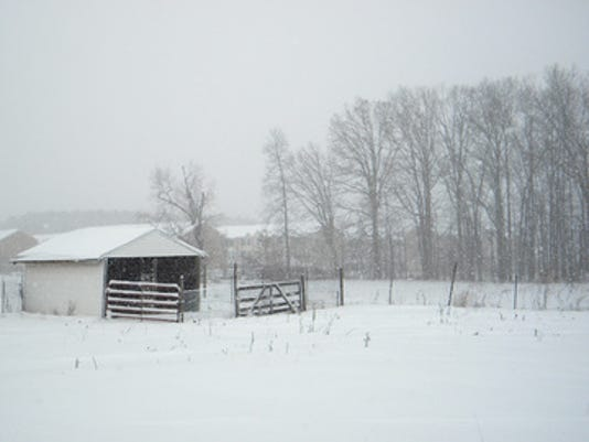 """Teanna Byerts of Dover submitted this photo to the YDR Weather gallery Mar. 5. Byerts writes, """"pasture in snow, Dover""""  Submitted"""