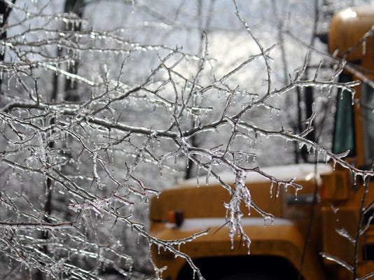 Icy tree branches and a school bus