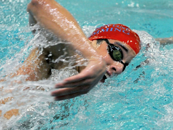 Stafe And Federation Swimming