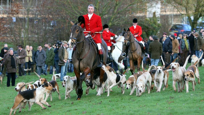 Members of the Albrighton Woodland Hunt club prepare for theirfox hunt at Hagley Hall in Hagley, England on Dec. 26, 2009.