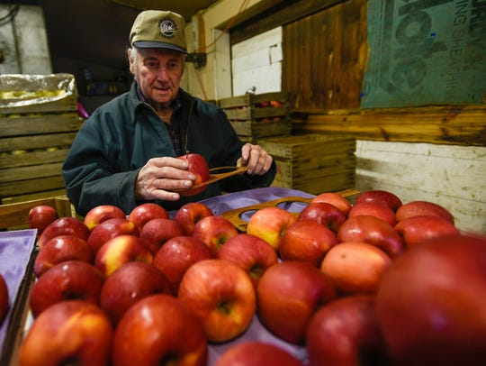 Jack Mickey checks sizes of apples inside Shatzer's