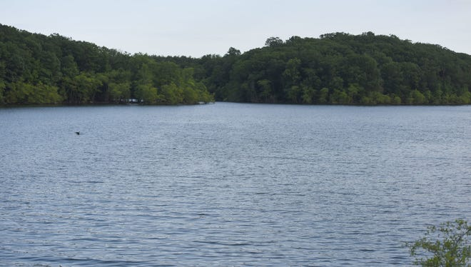 The Wanaque Reservoir was faring much better this summer than last, as rains helped replenish it and reduced water demand a year after a serious drought.