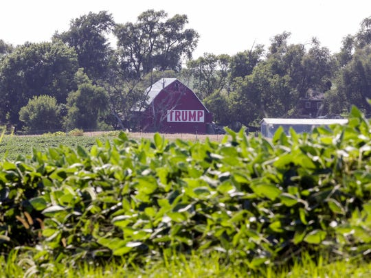 A field of soybeans is seen in front of a barn carrying a large Trump sign in rural Ashland, Neb., Tuesday, July 24, 2018. The Trump administration announced it will provide $12 billion in emergency relief to ease the pain of American farmers slammed by President Donald Trump's escalating trade disputes with China and other countries. (AP Photo/Nati Harnik)