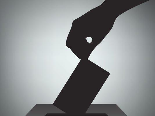 635902902548534580-voting.jpg