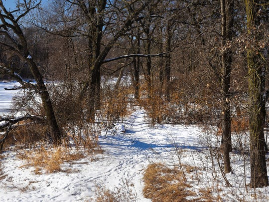 A path is the Sauk River Regional Park winds along