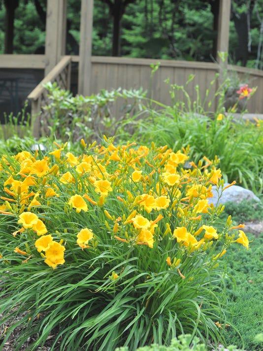 WDH 0710 GardenWalk 2.JPG