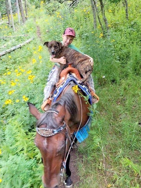 dog rescue on horseback