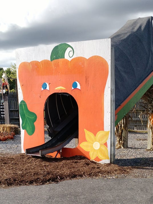 636445431610496941-Pumpkin-Slide.jpg