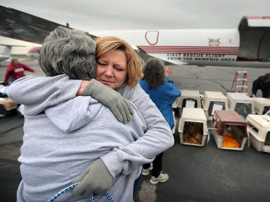 rescue pets airlift 1
