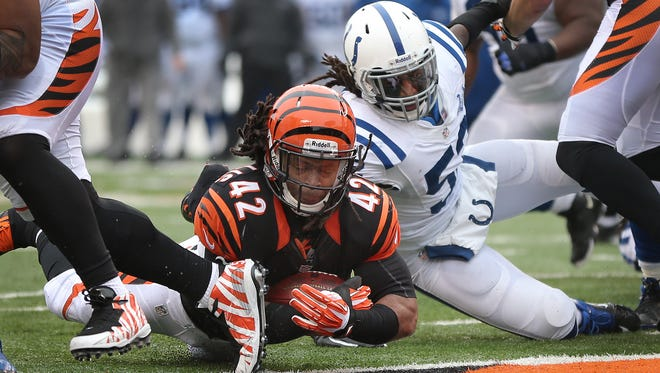 Cincinnati Bengals BenJarvus Green-Ellis dives in the end zone by Indianapolis Colts Kelvin Sheppard,right, for a second quarter touchdown, Dec. 8, 2013 at Paul Brown Stadium in Cincinnati.