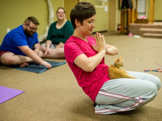 Ashley Sherard performs a yoga pose with a kitten during