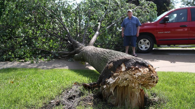 Gary Finn waits for an insurance adjuster before clearing the downed linden tree blocking his driveway, which took out power to his home when it fell during an overnight storm Tuesday.