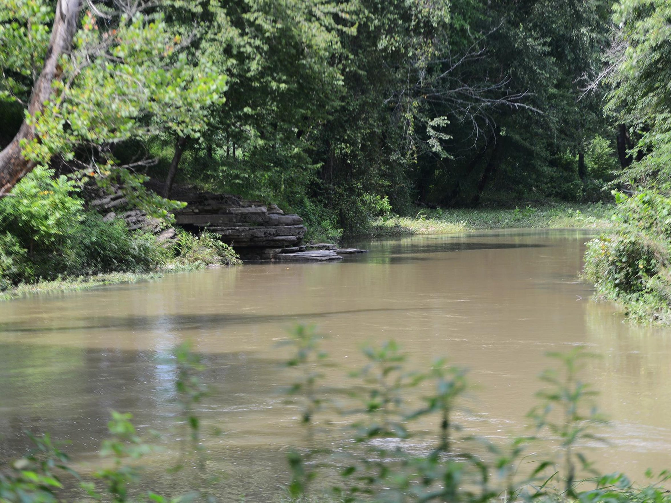 Horse Creek flows on the property of Sheltering Tree