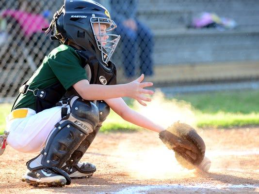 -Youth Sports Baseball 3.jpg_20140516.jpg