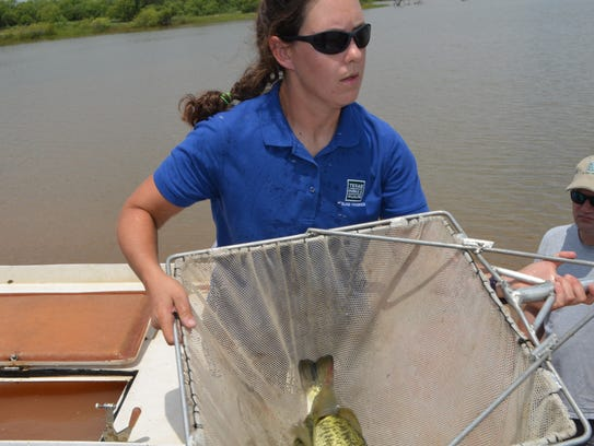 Elizabeth Foster, with the inland fisheries, Texas