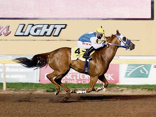 Cjs Rocksolid winning the Remington Park Distance Championship.