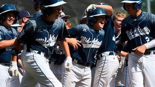 Red Land's Dylan Rodenhaber is congratulated by teammates after hitting a grand slam during in the Little League World Series Championship in Williamsport, Pa., Sunday.