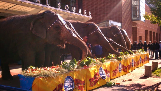 October 2011 file photo: An elephant show outside of the Blue Cross Arena at the Community War Memorial when the Ringling Bros. came to town.