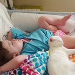 Blind 4-year-old reunites with cat after months apart