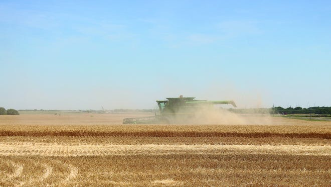 Wheat harvest is officially underway in Pratt County with combines rolling on Monday, June 14 one mile east of Pratt. So far moisture content and test weight reports for 2020 are good.