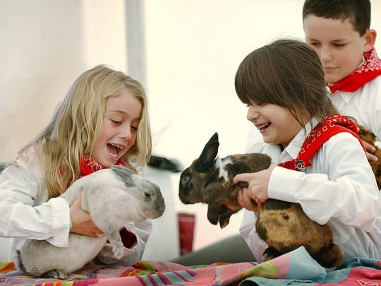Small children will enjoy the rabbit and guinea pig show at 2 p.m. Sunday in the livestock arena of the Martin County Fair.