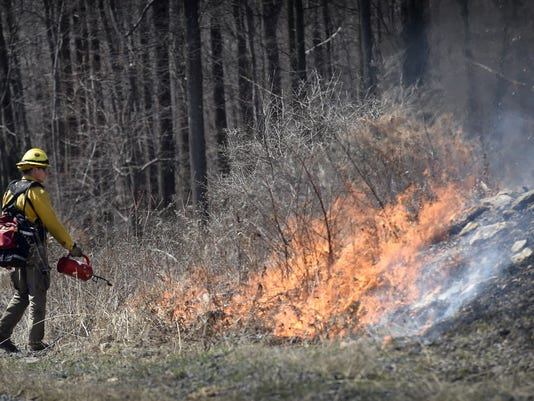 Steve Ferrari of the Pennsylvania Game Commission uses a drip torch to start a prescribed burn at Fort Indiantown Gap last April.