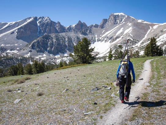 The trail to Wheeler Peak on Saturday June 10th 2017,