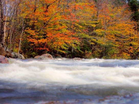 Trees sport colorful foliage as a river flows past