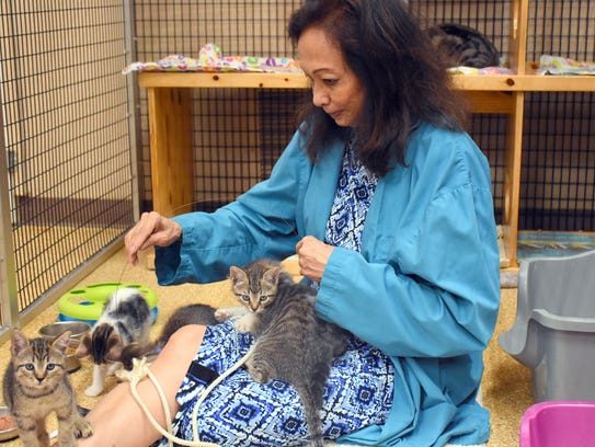Volunteer Lyne Flaherty spends quality time with kittens