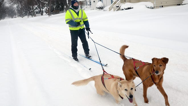 Mike Pionk, of Port Huron, enjoys a morning of skijoring, a combination of cross-country skiing while being pulled by sled dogs Monday on Pine Street.