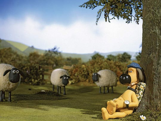 "Faithful Bitzer keeps an eye on ""Shaun the Sheep"" (not pictured) and the rest of the flock; things may look calm right now but they surely won't be for long."