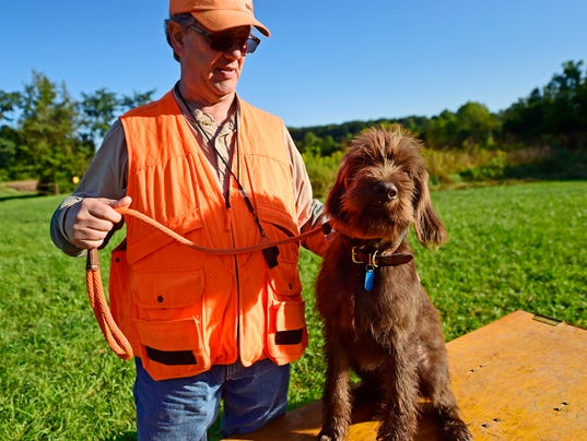 Dog Training York Springs Pa