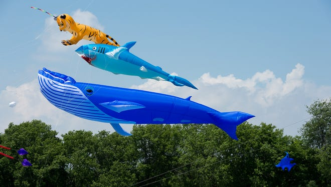 Giant show kites will be the stars of the free Fly a Kite Fest Saturday in Green Bay.