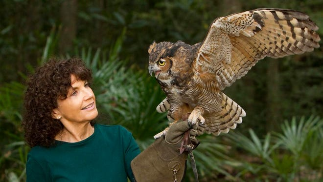 Sandy Beck with an owl. The Big Bend Sierra Club will host Sandy Beck, who will talk about St. Francis Wildlife Association at the club's Thursday meeting.