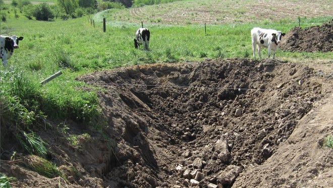 The sinkhole posed safety concerns to the dairy operation's cattle, due to its location amid active pastureland.