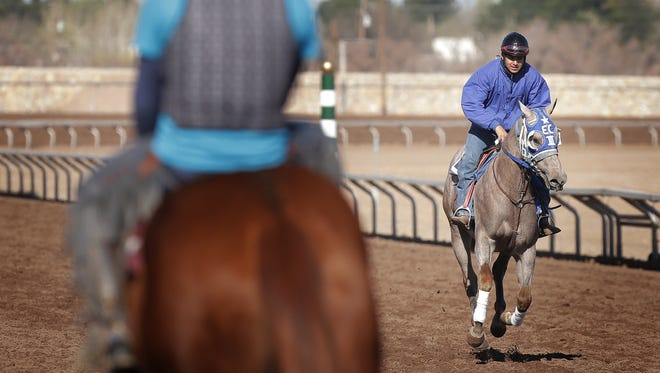 Horses who have been removed from quarantine at Sunland Park Racetrack & Casino work out Thursday morning in preparation for the start of the 2016 race season.