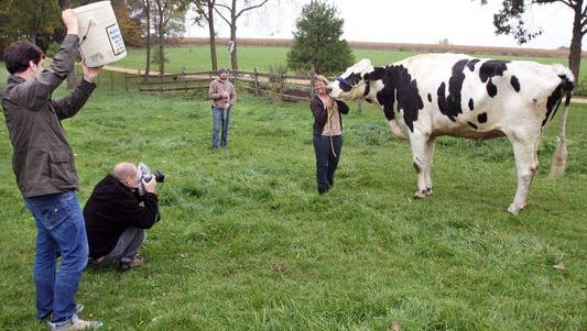 Patty Hanson smiles for the camera as she holds onto Blosom, her Holstein cow, while photographers from Guinness World Records take a photo.